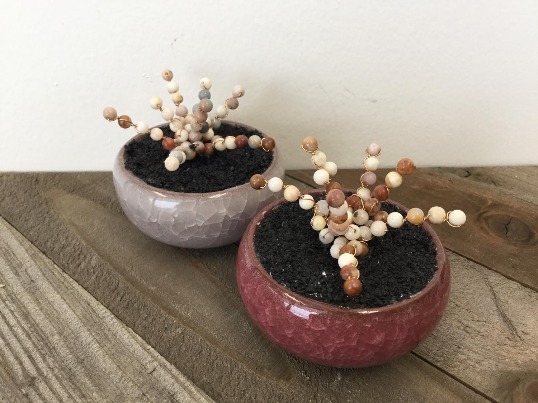 Agate Succulent