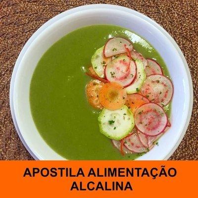 Apostila Alimentação Alcalina (inclui modo de preparo convencional e na Thermomix)