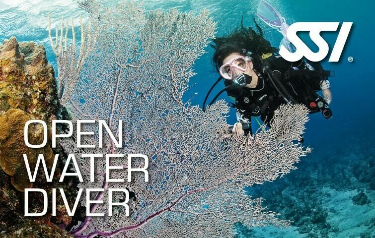 Kit numérique formation Open Water Diver