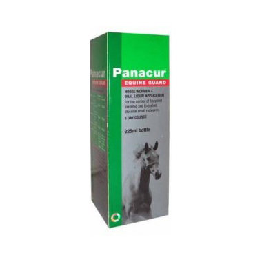 Panacur Equine Guard Horse Wormer