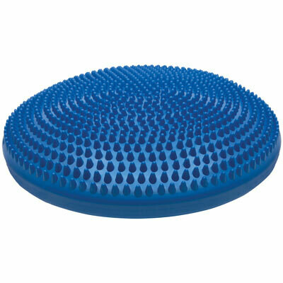 14 INCH EXERCISE DISC