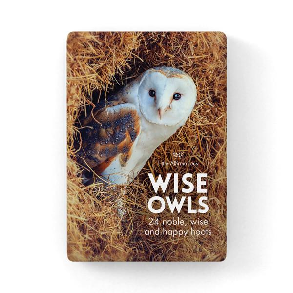 貓頭鷹心靈信息卡 (Wise Old Owls)
