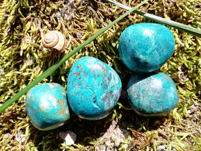 Chrysocolle moyenne roulée