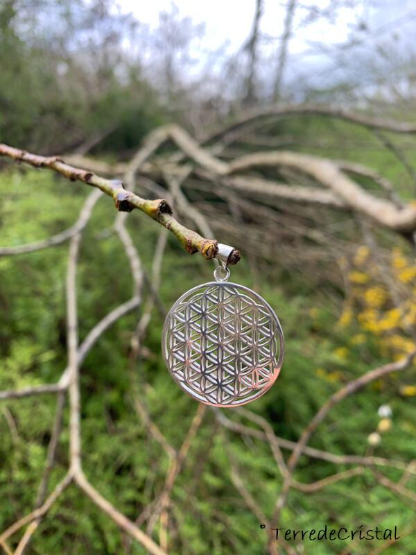 Pendentif fleur de vie en argent 925