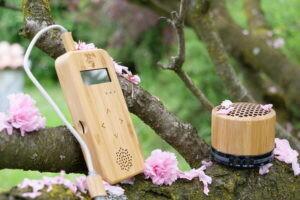 Musique des plantes, le lecteur Bamboo Basic