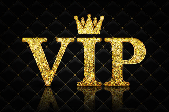 Early Bird VIP Party Pass (no hotel) - Deposit