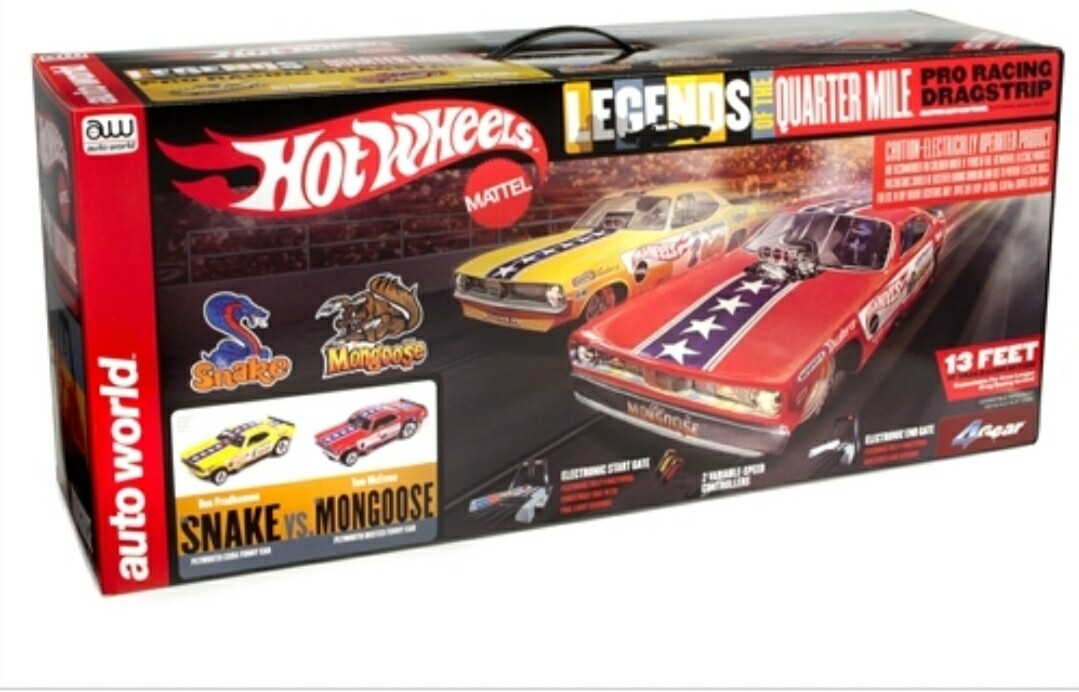 Snake and Mongoose Slot Car Track