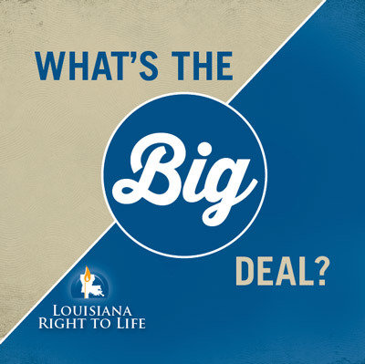 What's the Big Deal? Educational Booklet
