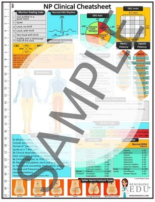 NP Clinical Cheatsheet  (digital and laminated version bundle pack)