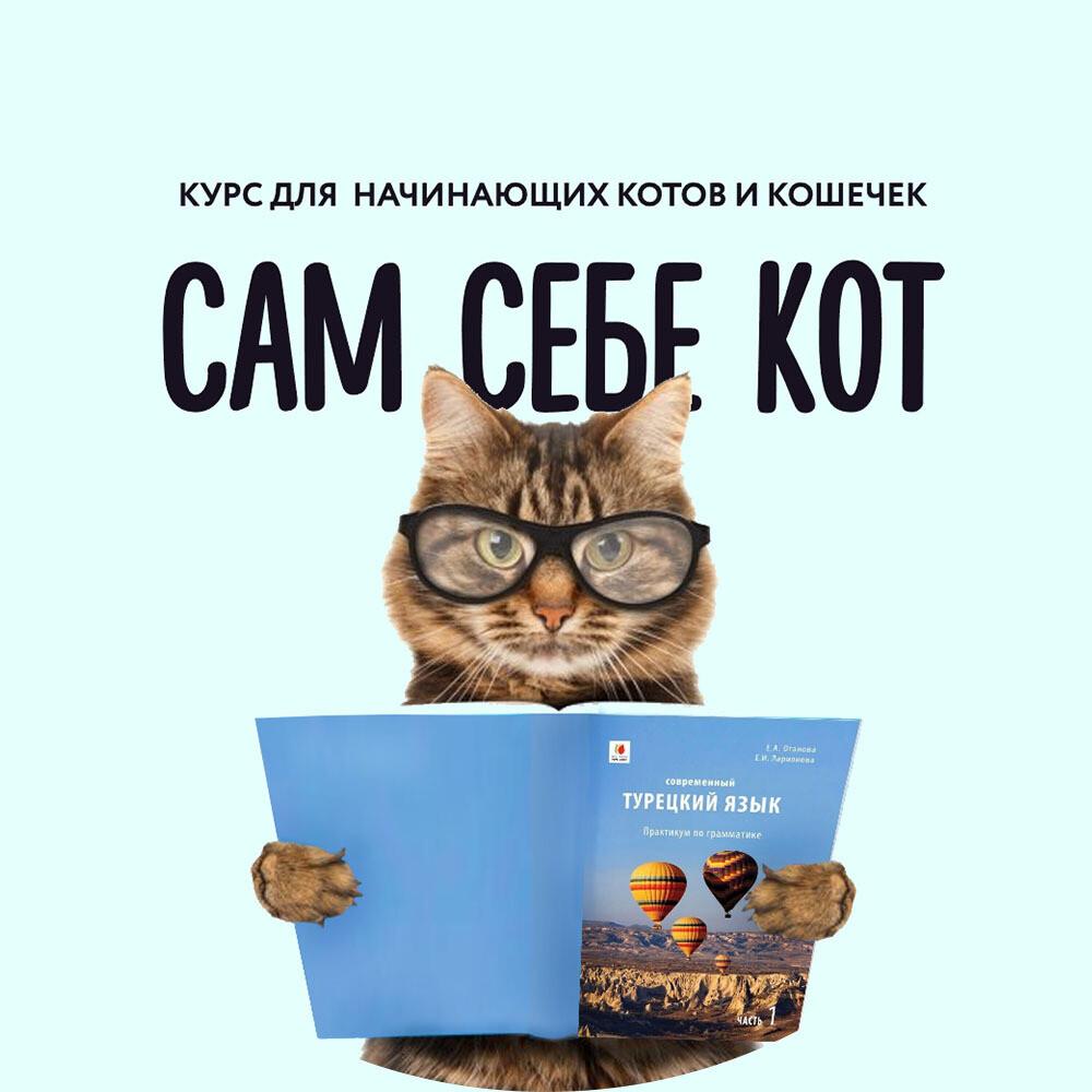 ДОВЕРИТЕЛЬНАЯ РАССРОЧКА 2 Турецкий для начинающих котов (Тариф САМ СЕБЕ КОТ) #2