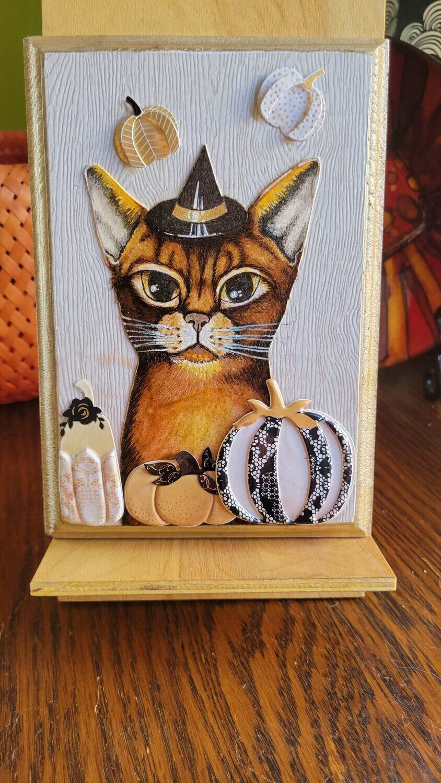 Abyssinian Pumpkin Cat