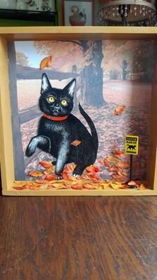 Black cat x-ing