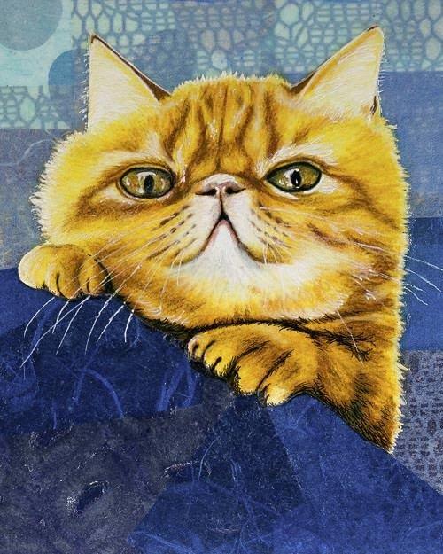 Ginger Kitty 8x10
