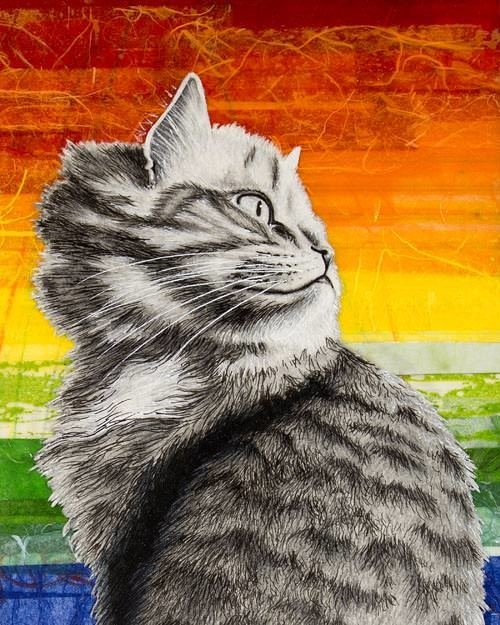 Pride cat 8x10