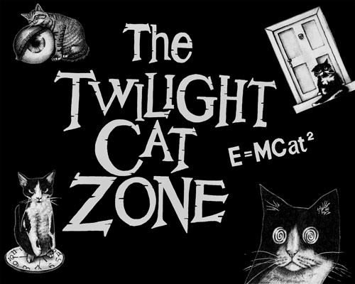 The twilight cat zone 8x10