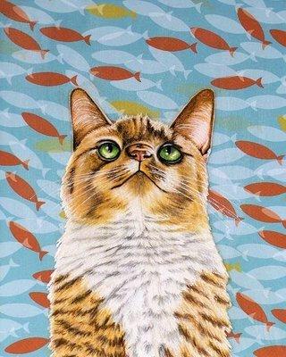 Cat fish tank 8x10