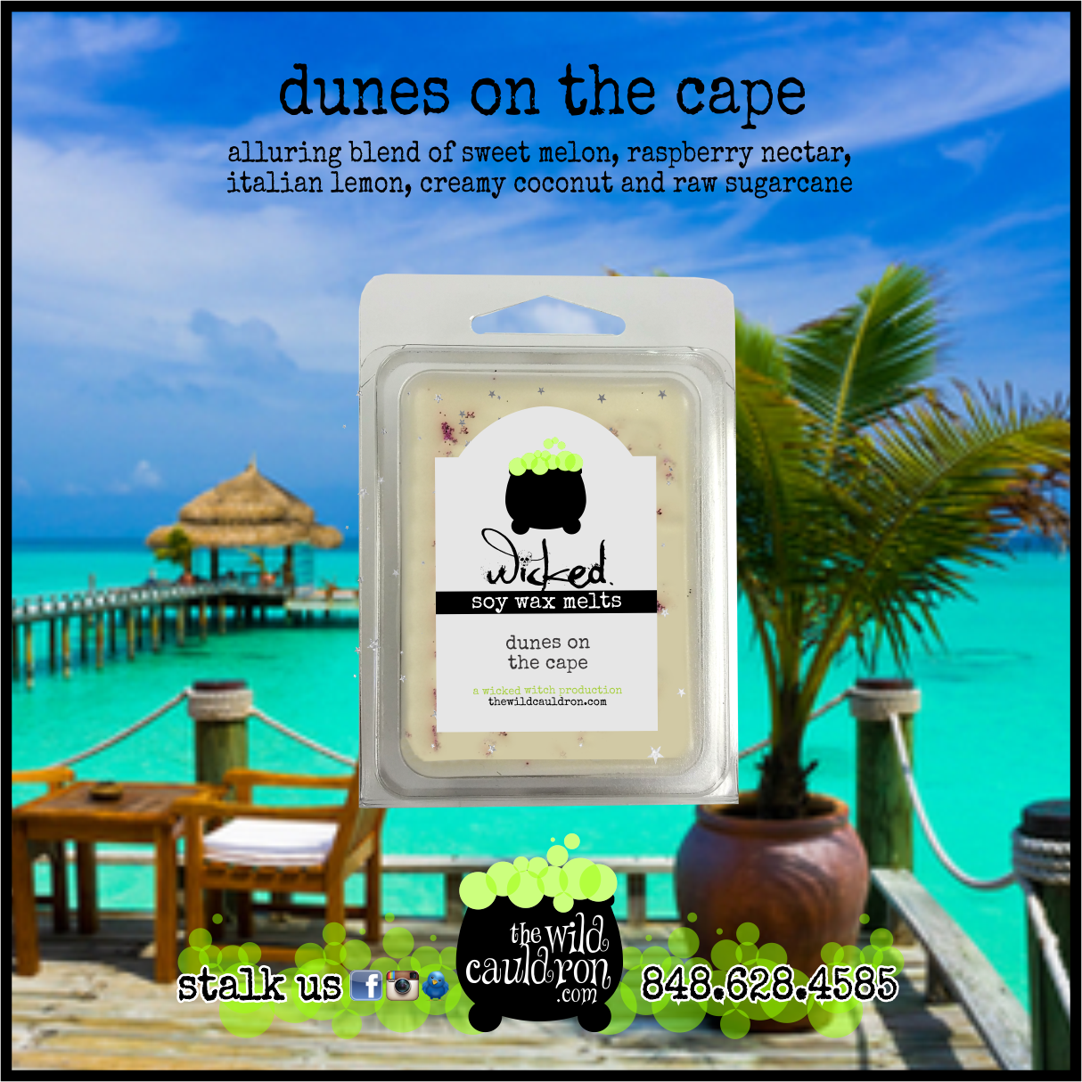 Dunes On The Cape Wicked Wax Melts