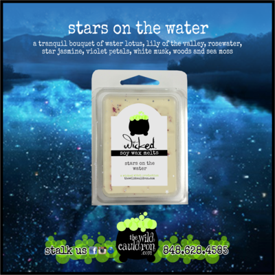 Stars on the Water Wicked Wax Melts