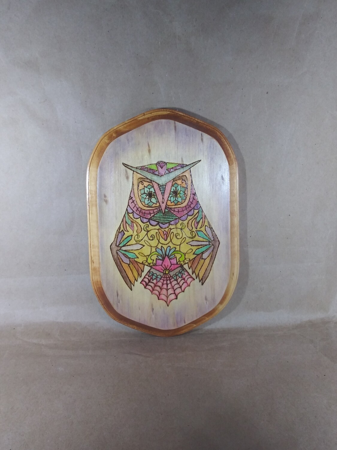 Colorful Wise Owl