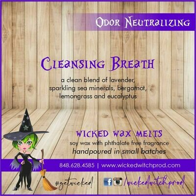 Cleansing Breath Odor Neutralizing Wax Melt