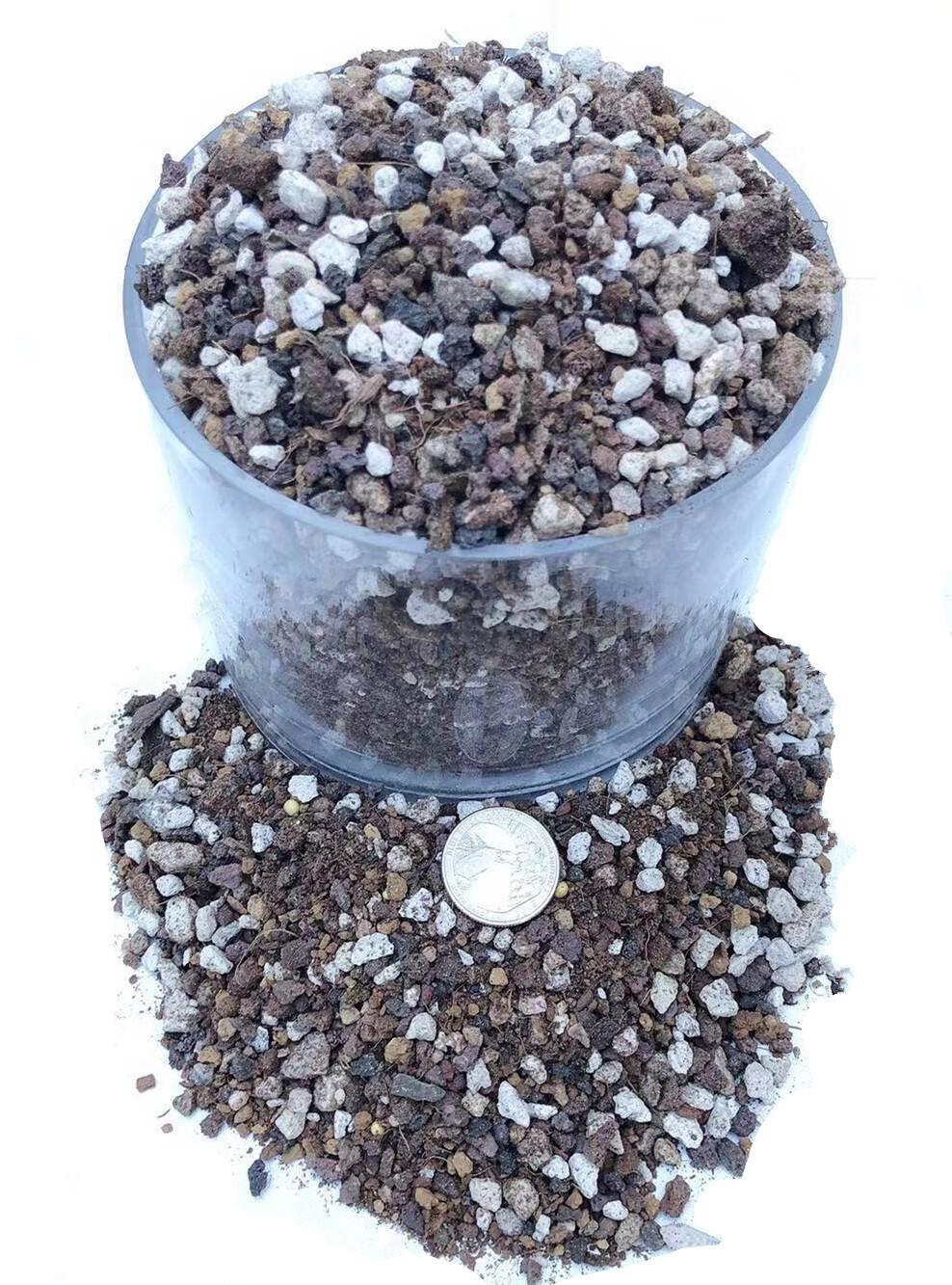 Succulent & Cactus Soil Mix - Premium Pre-Mixed Fast Draining Blend (2 Dry Quarts)