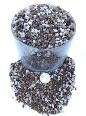 Succulent & Cactus Soil Mix - Premium Pre-Mixed Fast Draining Blend (2 Dry Quarts)
