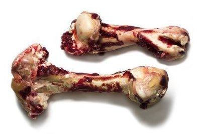 Dino Bones-BEEF