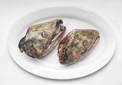Salmon Heads