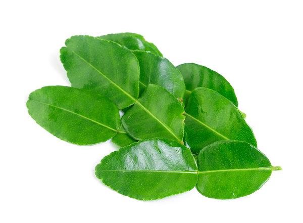 Organic Makrut (Kaffir) Lime Leaves - 0.5 oz