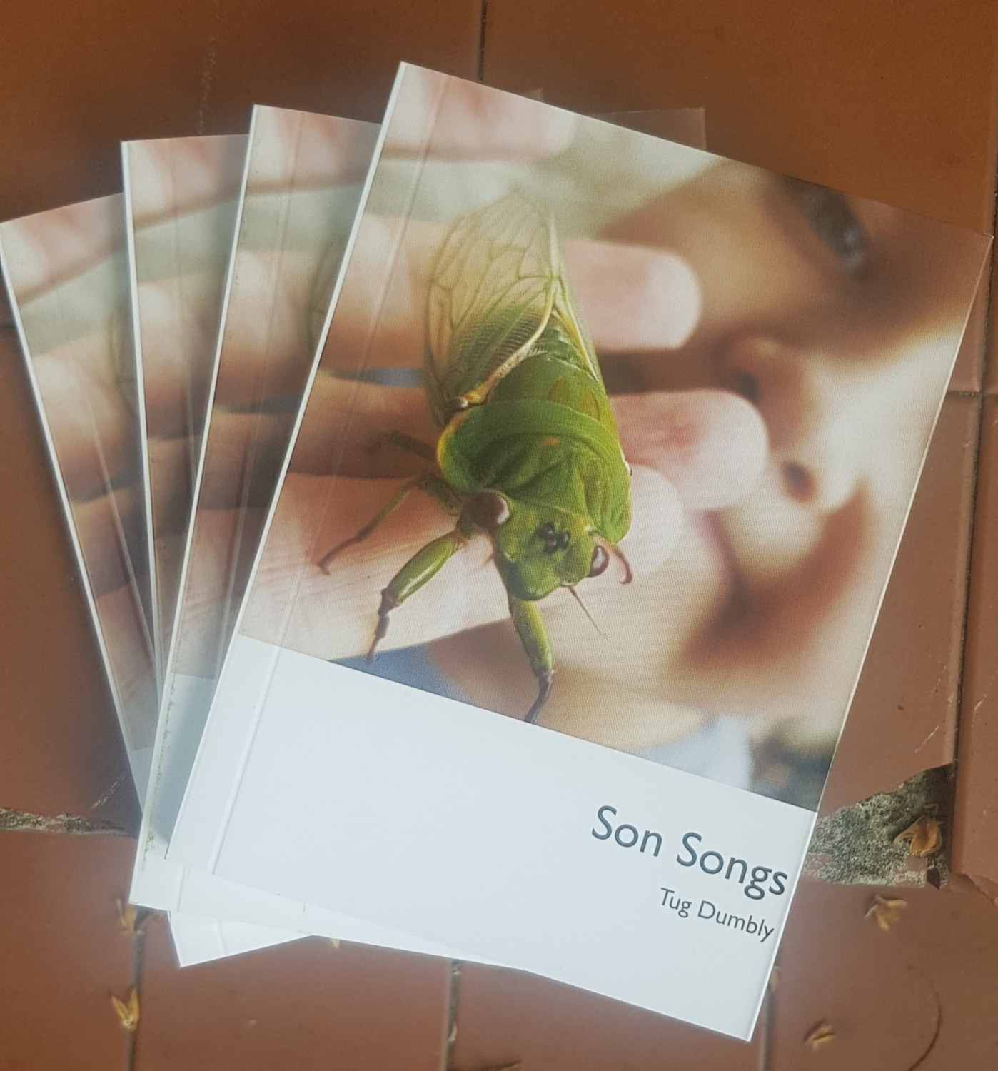 Poetry book Son Songs - Tug Dumbly