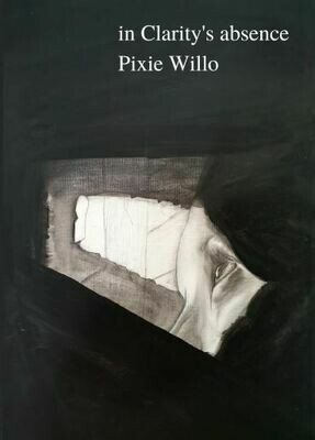 in Clarity's absence - Pixie Willo