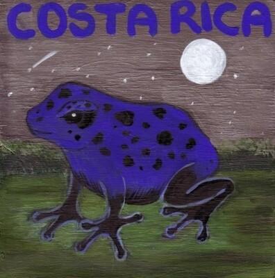 Costa Rica Tarrazu Abeja Red Honey