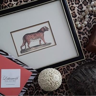 Vintage Framed Cheetah Print