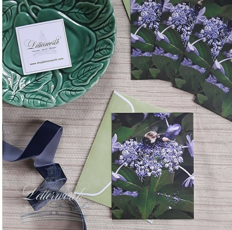 Mountain Hydrangea Note Cards by Letterworth (Set of 5)