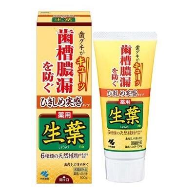 KOBAYASHI Pharmaceutical Leaves Hb Toothpaste