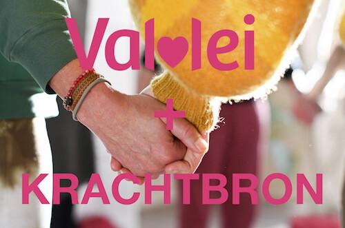 VLIEGENDE START : Krachtbron + Online Vallei programma incl. 21% BTW