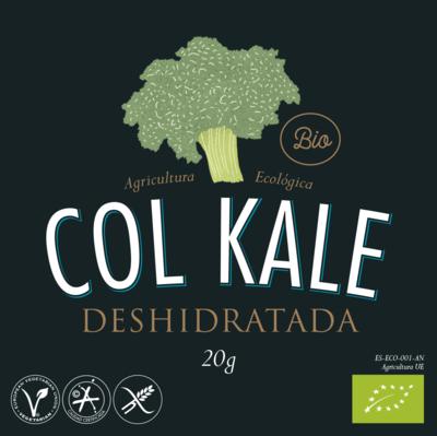 Snack Col Kale Deshidratado