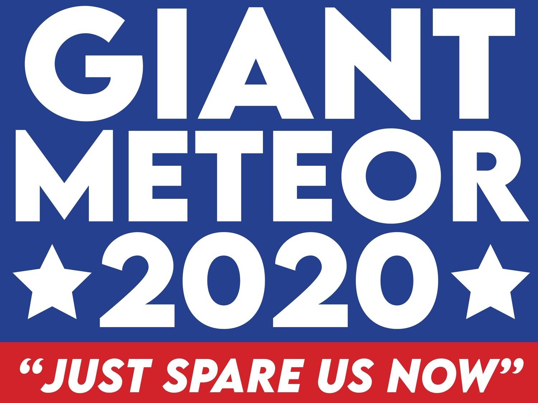 """""""Metor 2020"""" Sign"""
