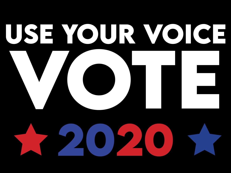 """VOTE 2020"" Sign"