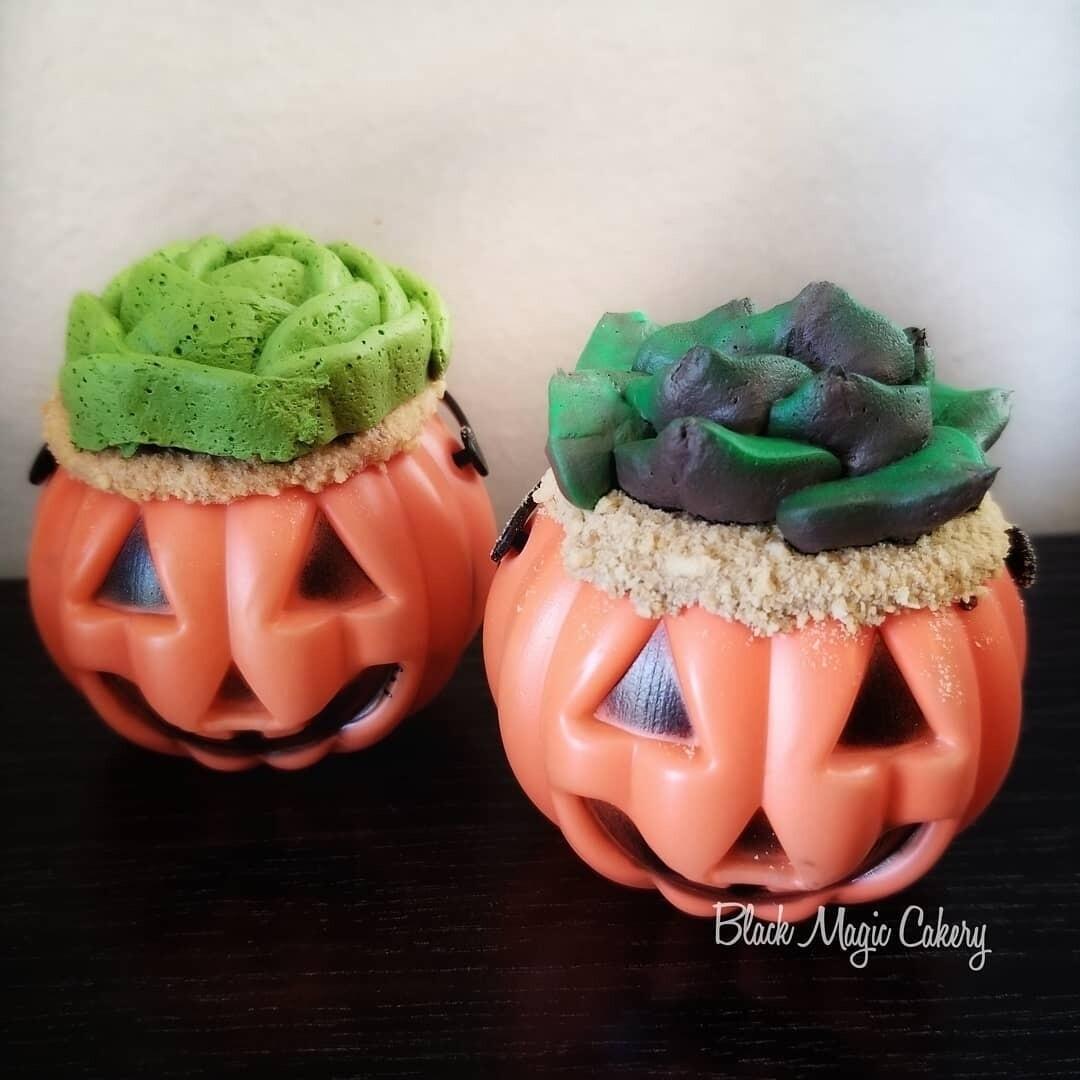 Mini succulent pumpkin pail CUPCAKE (chocolate)