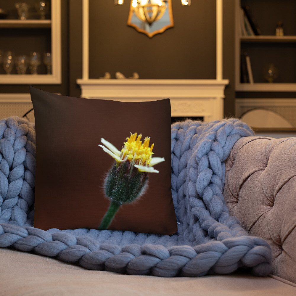 Hisa Printed Throw Premium Pillow