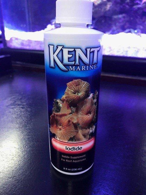 Kent Marine Iodide
