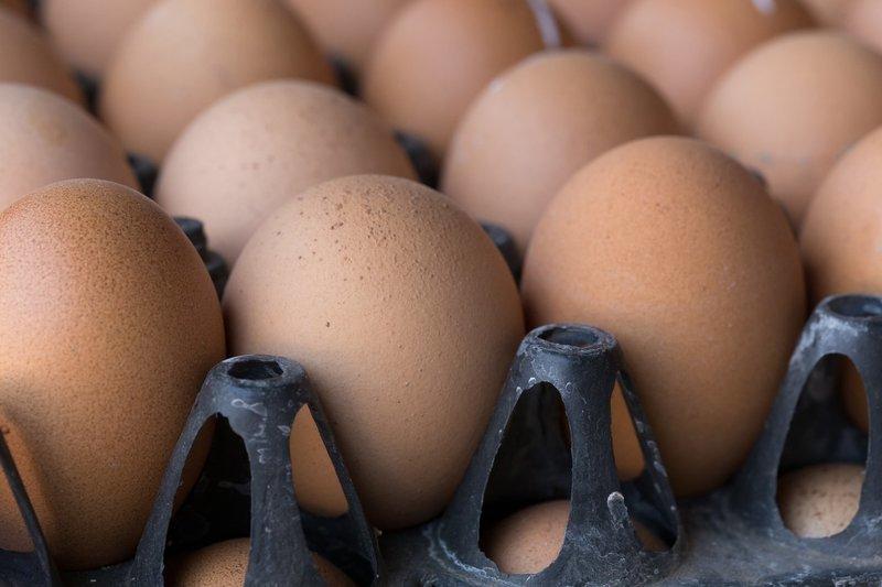 SAMPLE. Fresh eggs
