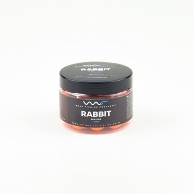 Rabbit Fluoro Pop Up