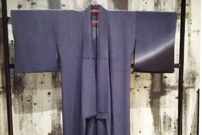 Ladies kimono for summer : フォーマル夏きものLadies(005)