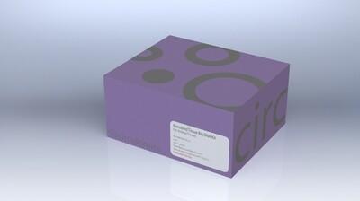 Nanobind Tissue Big DNA Kit
