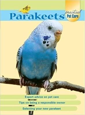 Parakeets Practical Pet Care