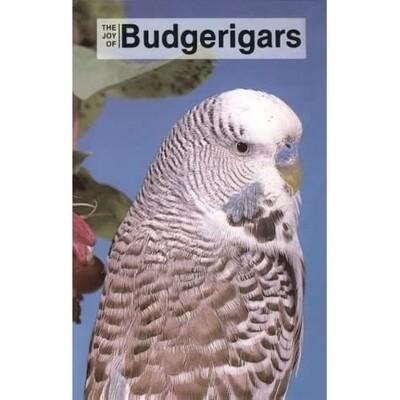 The Joy Of Budgerigars