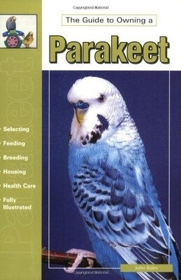 The Guide to Owning a Parakeet ( Budgie )