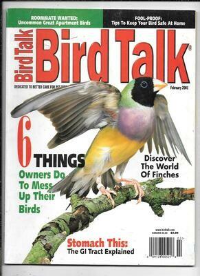 BirdTalk Magazine february 2001